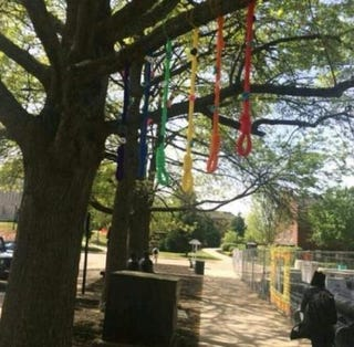 Colorful nooses found on the campus of Austin Peay State University in Clarksville, Tenn. The school says an investigation uncovered that they were part of an artistic display.Twitter