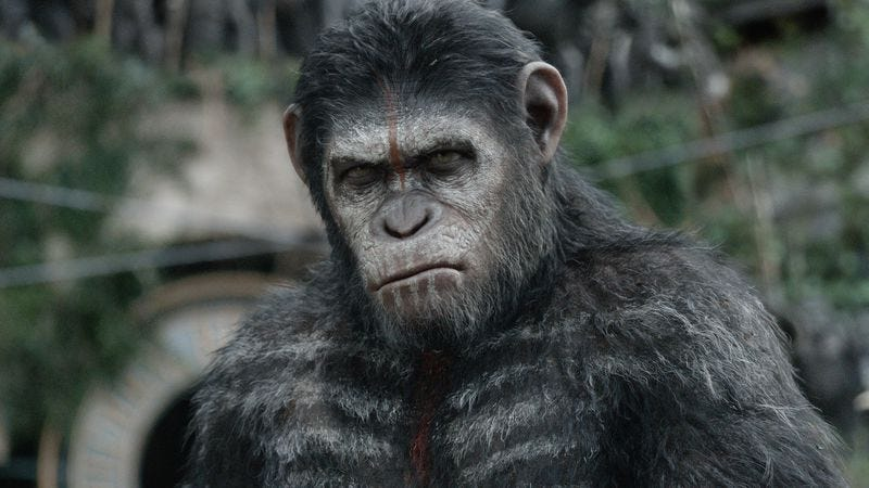 Illustration for article titled Weekend Box Office: Apes conquers all comers, even the one played by Cameron Diaz