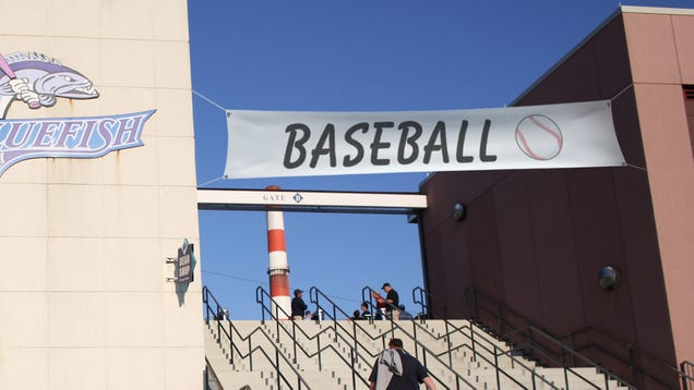 Lazy Minor League Promotion Just 'Baseball Night At The Stadium'