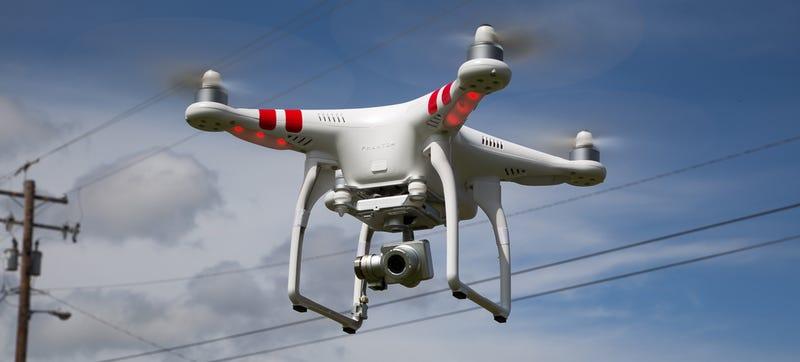 Illustration for article titled Utilizan drones para localizar y robar plantaciones de marihuana