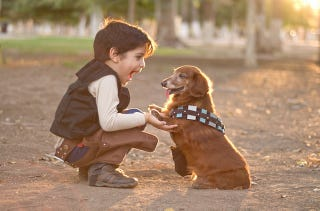 Illustration for article titled The most adorable Han Solo and Chewbacca are this kid and his dog