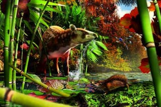 Illustration for article titled Tiny Thumb-Sized Hedgehog Lived in Canada 52 Million Years Ago