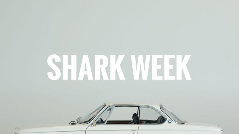 """Illustration for article titled The Great Outdoors #33 """"Shark Week"""""""