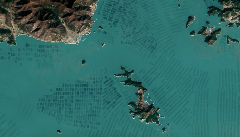 Illustration for article titled El extraño paisaje de las granjas de algas de Corea, desde el espacio