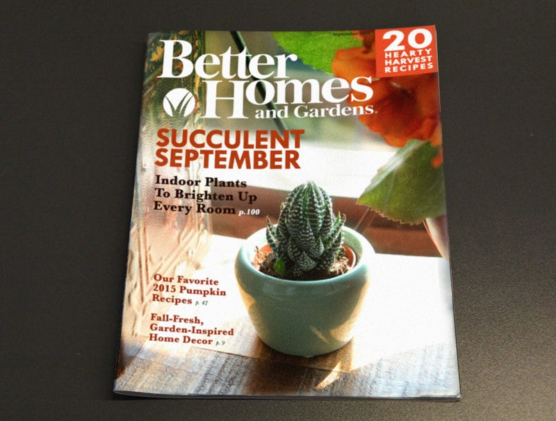 Illustration for article titled 'Better Homes & Gardens' Puts First Plus-Sized Succulent On September Cover