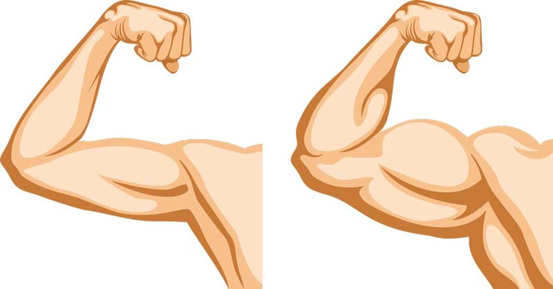 Illustration for article titled What Are Steroids?