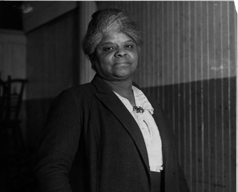 Illustration for article titled Exclusive: Ida B. Wells' Great-Granddaughter Discusses Her Legacy, Growing Monument Campaign