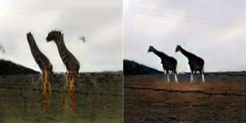 Generating giraffes with CycleGAN (left) and InstaGAN (right).