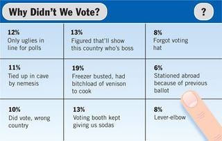 Illustration for article titled Why Didn't We Vote?