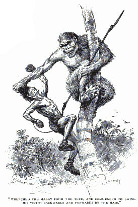 "Illustration for article titled ""The Hunt of the Man-Monkey"": cryptozoology from 1901"
