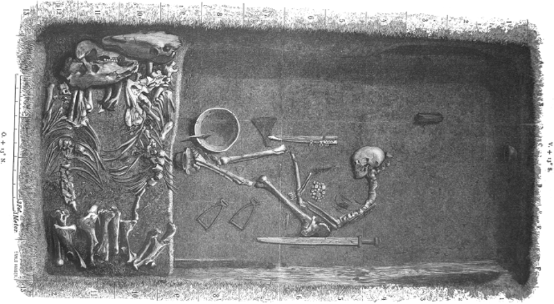DNA proves Viking remains belonged to a high-ranking, female military leader