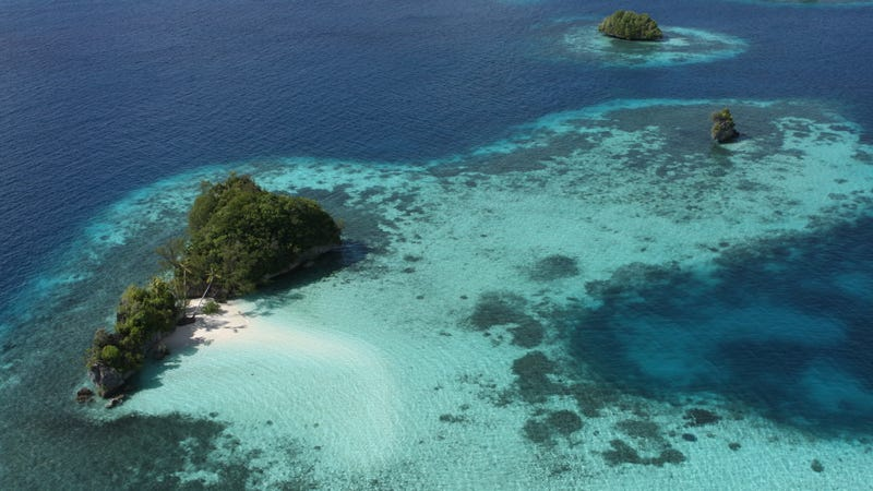 Some islands of Palau in all their glory.