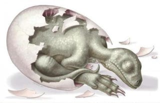 Illustration for article titled 190 million year old dinosaur eggs are the world's oldest preserved embryos