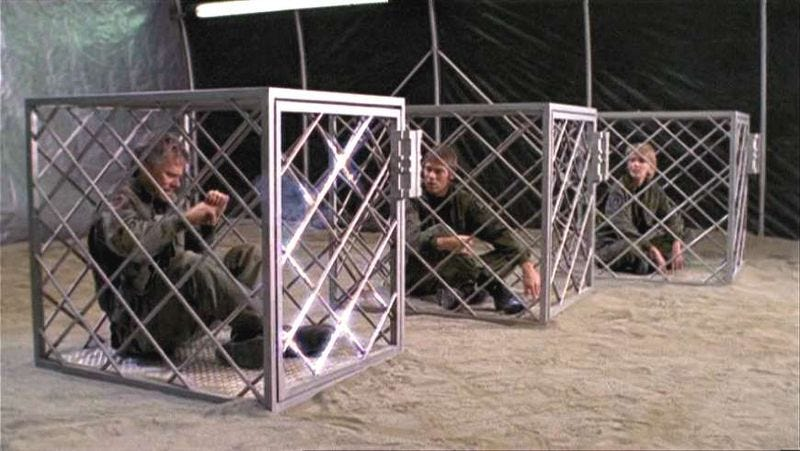Illustration for article titled Stargate: SG-1 Rewatch - Season 3, Episode 19New Ground& Episode 20Maternal Instinct