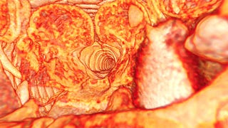 Illustration for article titled Cornell's $500,000 Micro-CT Scanner Lets You See Small Things in Color 3D