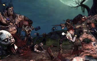 Illustration for article titled Borderlands DLC Now Available for PC