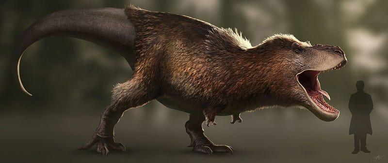 Reconstrucción moderna de un T-rex según las últimas evidencias fósiles. Ilustración: RJPalmerArt