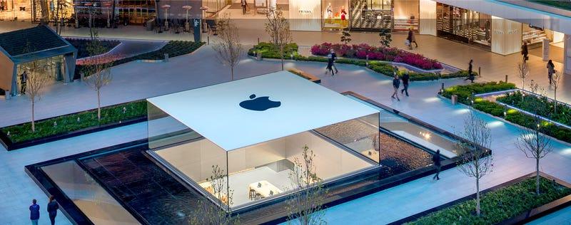 Illustration for article titled Apple vende más iPhones que nunca, pero las ventas del iPad se desploman