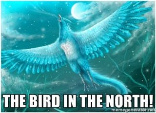 Illustration for article titled The Bird In The North!