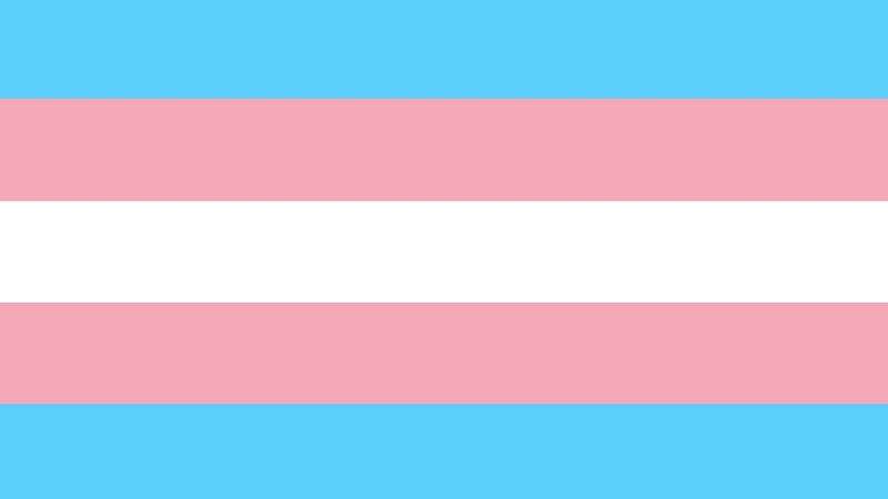 Illustration for article titled A Wells Fargo Skyscraper in North Carolina Lit Up the Sky With the Colors of the Trans Flag