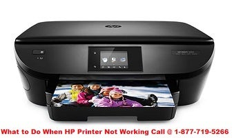 Illustration for article titled What to Do When HP Printer Not Working