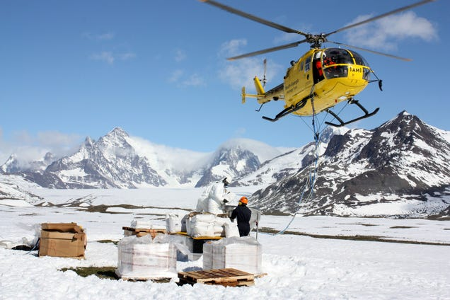 The Helicopter Pilots Who Carpet-Bomb Islands to Battle Invasive Rats