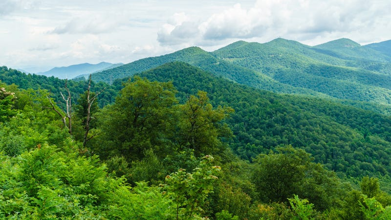 The Atlantic Coast Pipeline was supposed to run through this Blue Ridge Parkway, but this halt will keep it safe—for now.