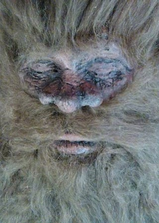 Illustration for article titled Is this really the face of Bigfoot?