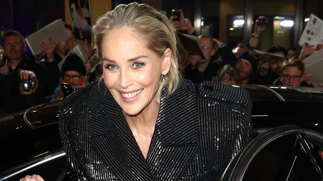 Sharon Stone Was Blocked From Bumble, Just Like Us