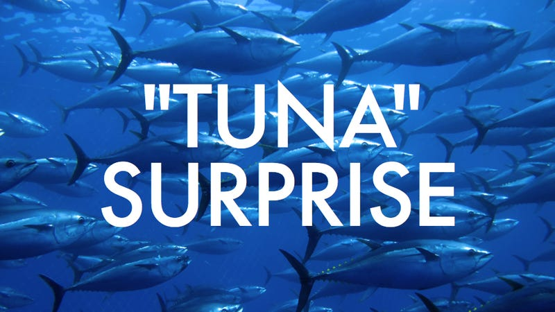 Illustration for article titled Most U.S. tuna isn't really tuna, and confusion can lead to oily anal leakage