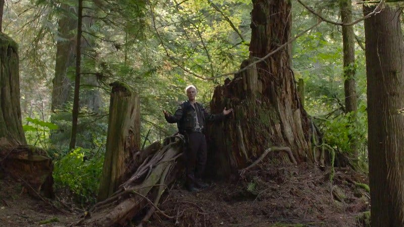 Dana Ashbrook (Screenshot: Twin Peaks)