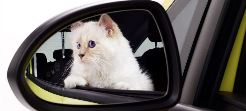 Illustration for article titled Karl Lagerfeld's Cat Is Now (Adorably) Advertising Cars