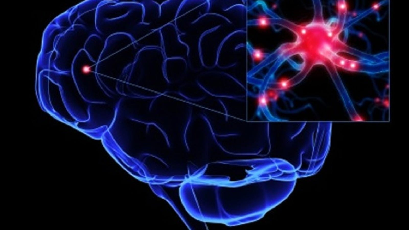 How Exactly Do Neurons Pass Signals Through Your Nervous System Electric Current Is The Rate At Which Charge Flows A Surface