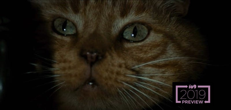 Jones the cat witnesses something very gruesome in Alien.