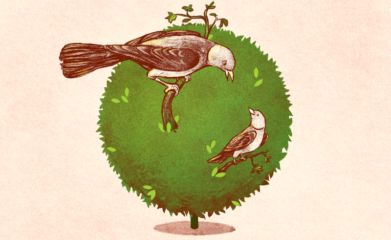 Illustration by Jim Cooke/GMG.