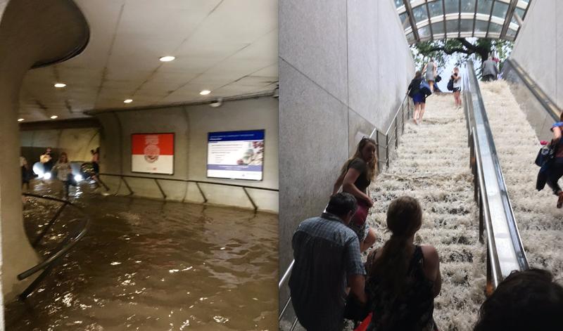 Swimming home from work in DC. (Images: @SenoritaDez)