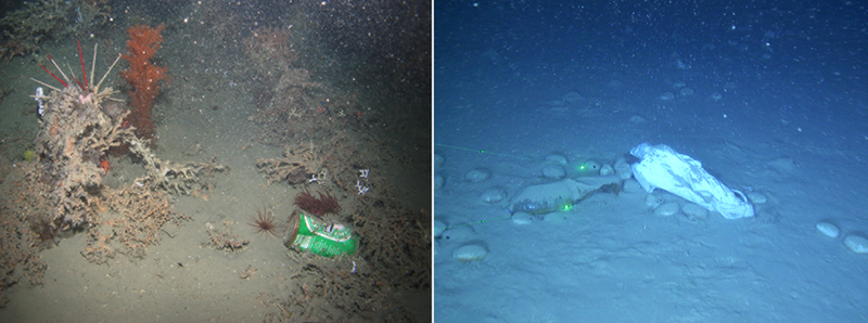 Illustration for article titled Latest Survey Shows That Our Ocean Floors Are Covered In Garbage