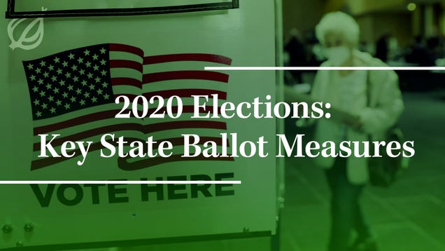 2020 Elections: Key State Ballot Measures