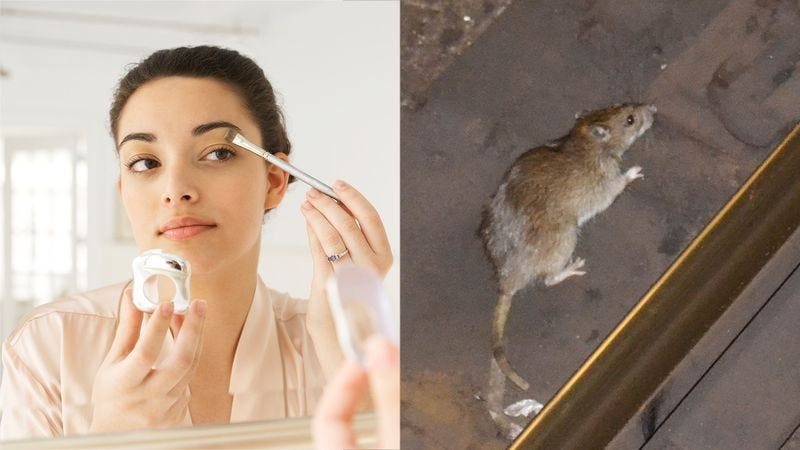 Illustration for article titled 5 Makeup Tips So Good That If A New York City Rat Got Ahold Of Them It'd Be Able To Steal Your Husband
