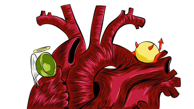 Illustration for article titled Most People Have Cholesterol All Wrong