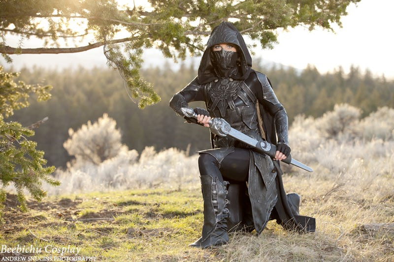 Illustration for article titled Pretty cool Skyrim cosplay