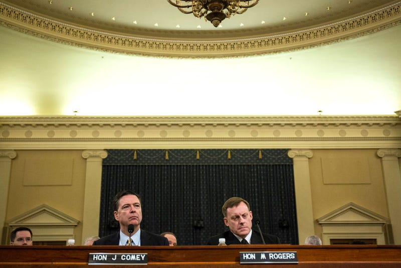 James Comey, director of the FBI, and Michael Rogers, director of the National Security Agency, testify during a House Permanent Select Committee on Intelligence hearing concerning Russian meddling in the 2016 United States election March 20, 2017, in Washington, D.C.  (Zach Gibson/Getty Images)