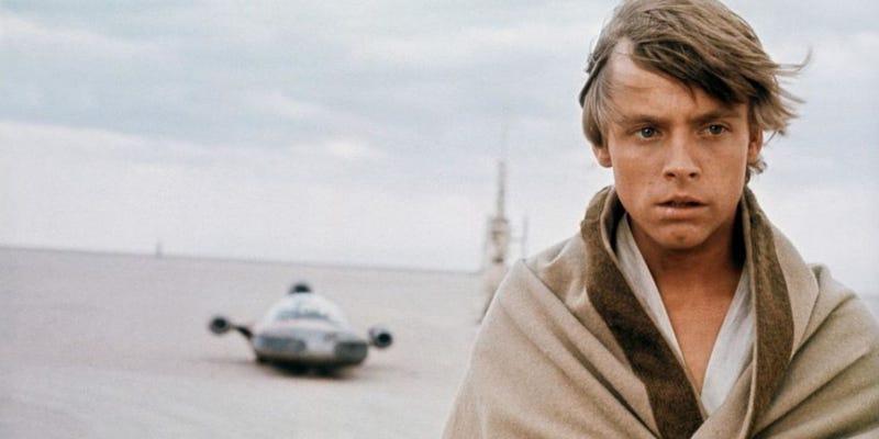 Illustration for article titled Mark Hamill no supo que era el protagonista de Star Wars hasta que recibió el guión