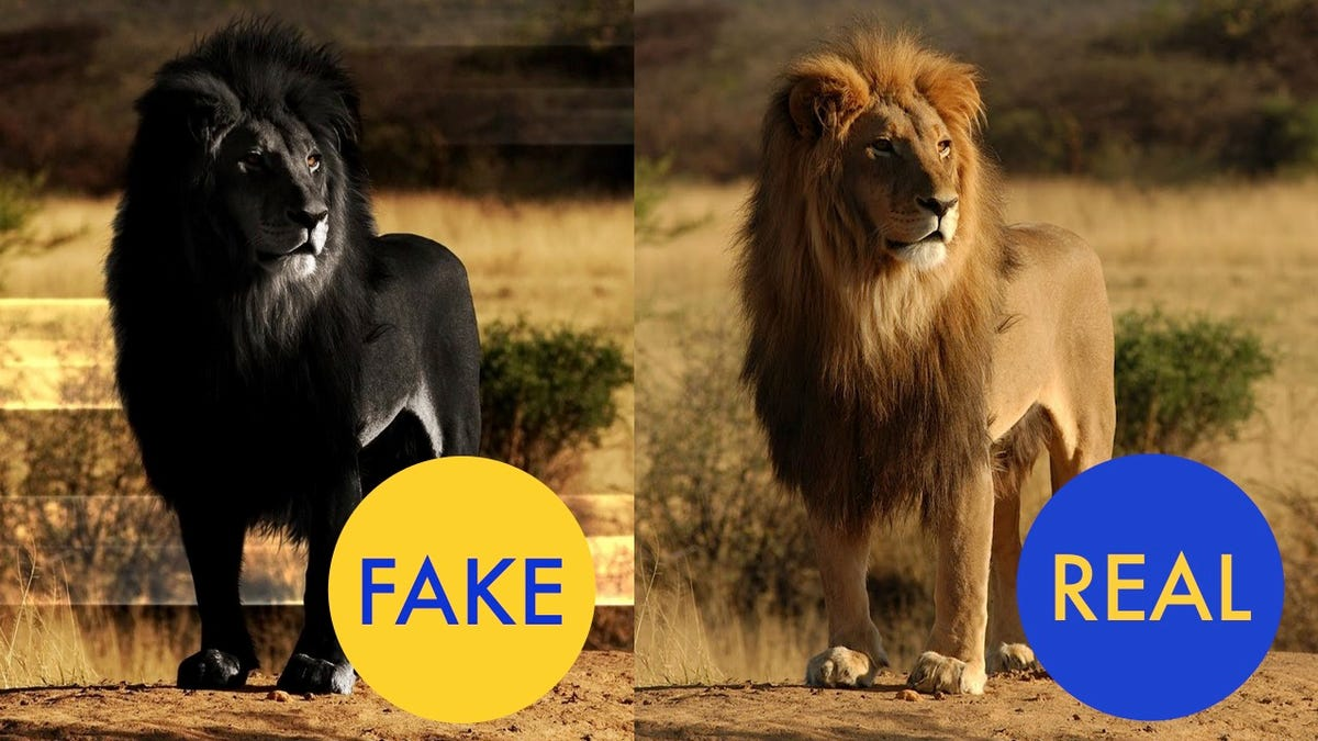 Huge animals: real and fake