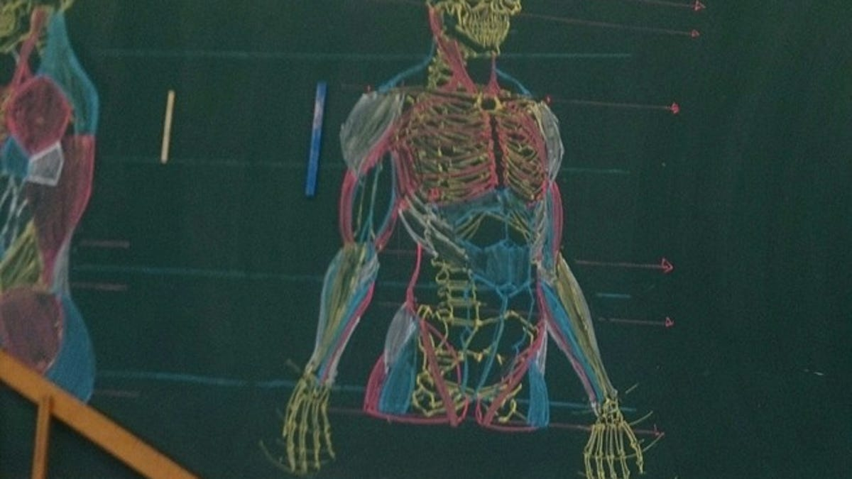 Teaching Human Anatomy With Chalkboard Art