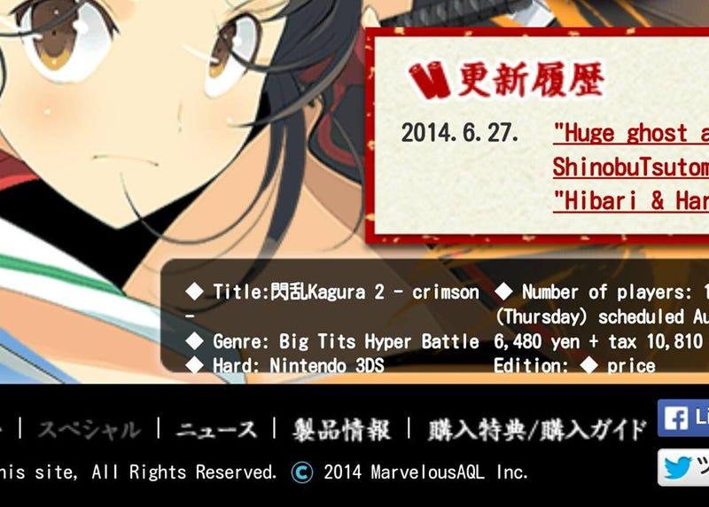Illustration for article titled Google Translate Senran Kagura 2: Deep Crimson  Website