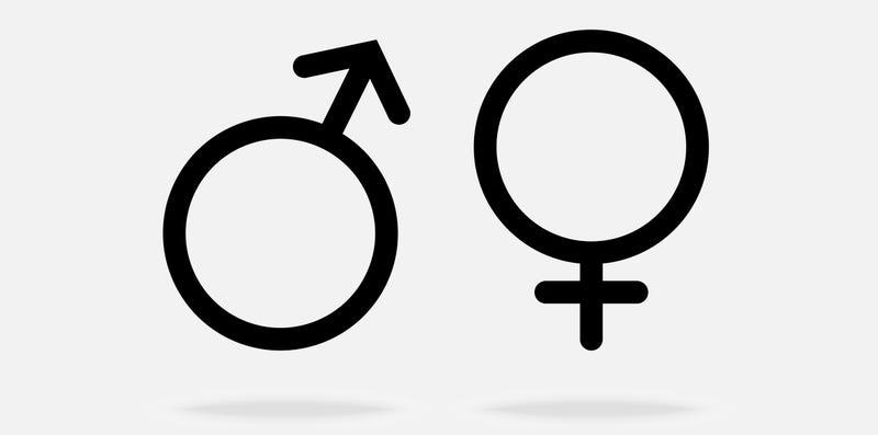El sexo masculino no debería existir, pero ahora entendemos por qué sí