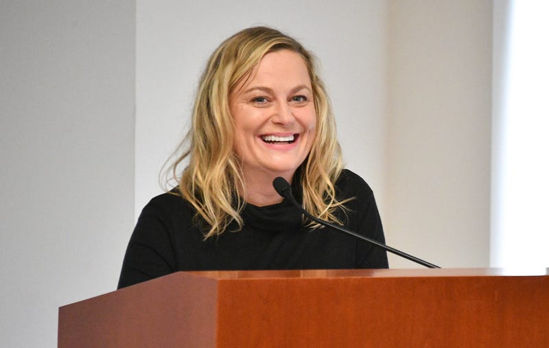 Illustration for article titled Amy Poehler to Direct and Star Alongside SNL Alumni for Netflix's Wine Country