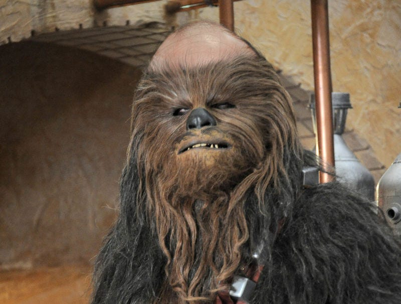 Illustration for article titled 'The Last Jedi' Footage Reveals Chewbacca Balding Since 'The Force Awakens'