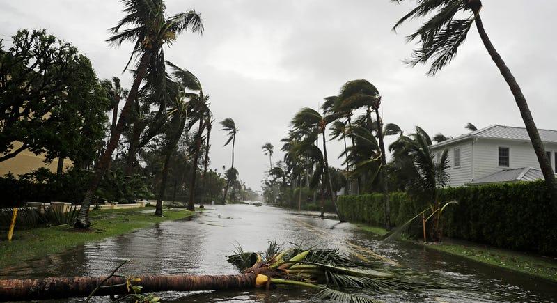 Irma ya es depresión tropical en Estados Unidos